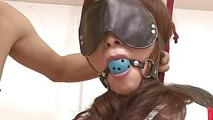 asian bdsm big tits blindfolded dildo