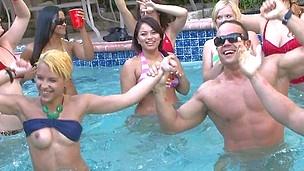 bear bikini cfnm dancing girls