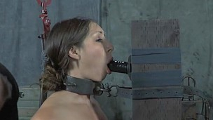 bondage brunette dildo fur gagged